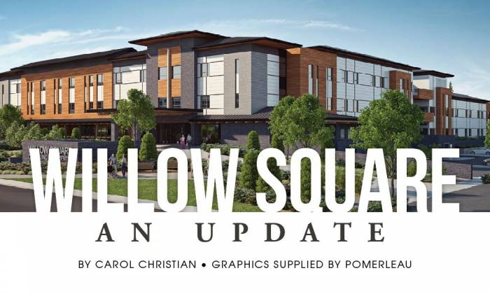 Willow Square: An Update